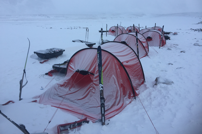 Debra Searle - Arctic Circle
