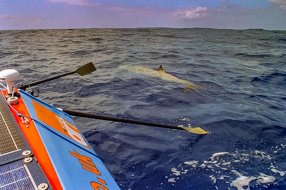 Debra Searle - Rowing the Atlantic